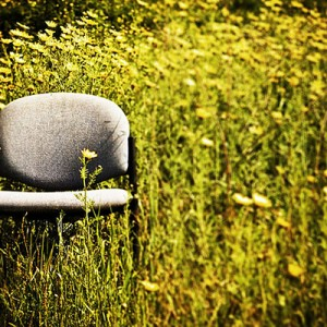 Office chair in field